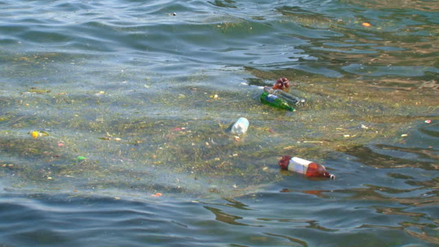 environmental pollution of the sea