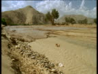 Ephemeral river begins to flow in old river bed, Namibia