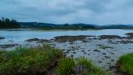 Escalante marshland