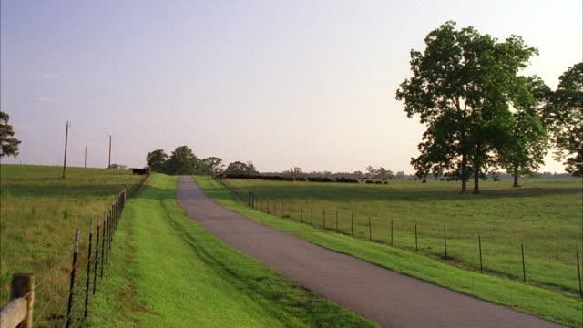 WS Establish single lane road through rural pastures