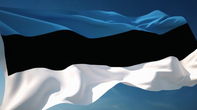 4K Estonia Flag - Loopable
