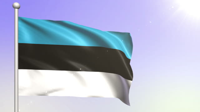 Estonia Flag (Loopable)
