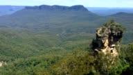 Eucalyptus Gum Tree Forest Blue Mountains, Australië