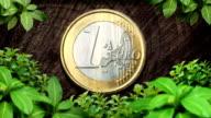 euro Münze Natur