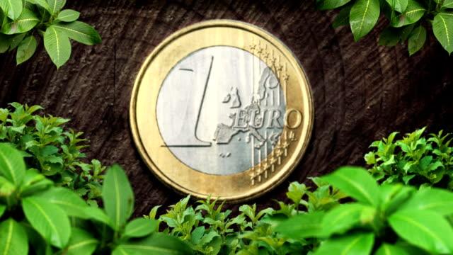 euro coin nature