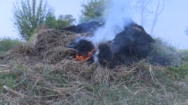 Every year hundreds of thousands of farmers burn their fields in the states of Haryana and Punjab to clear million of hectares of farmland from the...