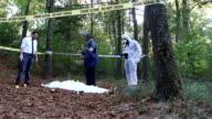Examining the crime scene