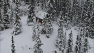 AERIAL Expansive snow covered forest surrounding small, secluded wood cabin / Alaska, United States