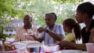 Extended family celebrating at picnic with cake