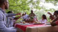 Extended family toasting military man at picnic