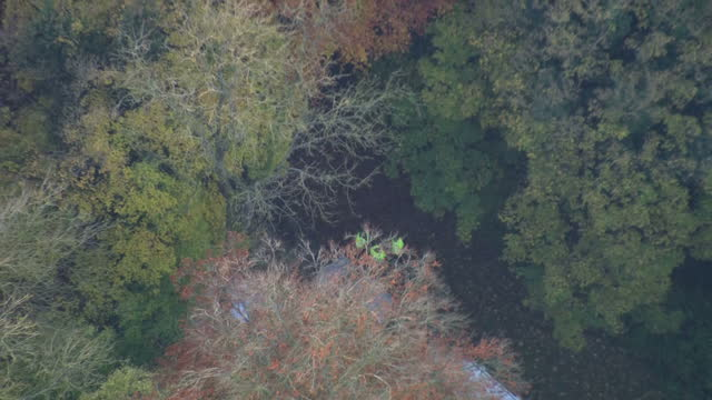 Exterior aerial shots of the debris of a helicopter and light plane seen through a canopy of trees after a mid air collision as police survey the...