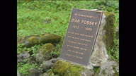 Exterior close up shots of Dian Fossey's grave and gorillas buried nearby graves marked with wooden crosses at Volcanoes National Park on October 1...