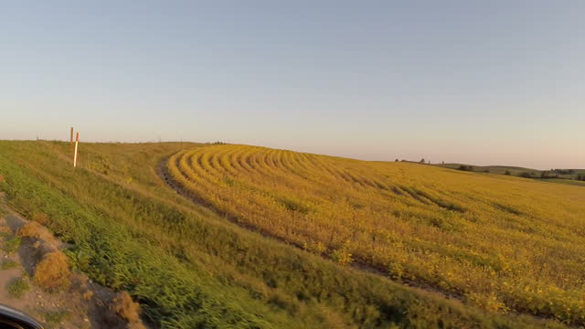 Exterior driving shot along rural Nebraskan road past fields of maize as the sun sets behind distant hillsides on September 19 2014 in Washington DC