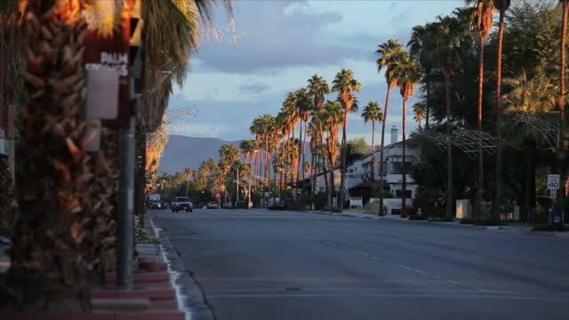 Exterior shot traffic passing down a tree lined road at sunset on 7th November 2010 in Palm Springs California United States