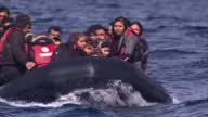Exterior shots dinghy packed with migrants drifts towards beach without engine power volunteers enter the sea to help the migrants on October 15 2015...