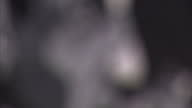 Exterior shots mural of musician Johnny Cash on the side of The Viper Room Nightclub on Sunset Boulevard West Hollywood California on in Hollywood...