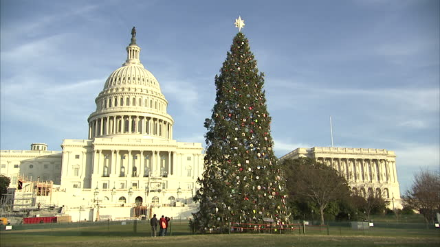 Exterior shots of a large Christmas tree with the Capitol Building and Washington Monument behind it with close ups of the decorations on December 09...