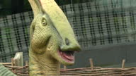 Exterior shots of animatronic models of a parasaulophus and an edmontonia two species of herbivorous dinosaur from the late Cretaceous period on...