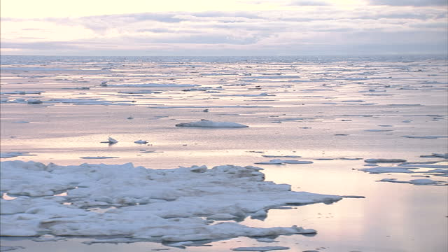 Exterior shots of Arctic Ice Floes and Drift Ice on August 25 2007 in Cambridge Bay Canada