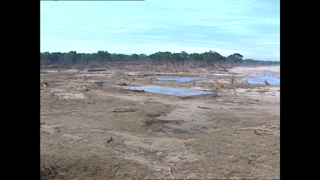 Exterior shots of damage to the coastline in a nature reserve near Hambantota in the aftermath of the tsunami including shots of the damaged remains...
