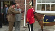 Exterior shots of Prince Charles inspecting the Welsh moutain pony Trooper Emrys Forlan Jones the mascot of the Dragoon Guards and waving to crowds...