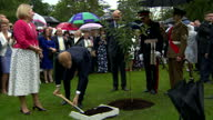 Exterior shots of Prince Harry planting a tree in the grounds of Hillsborough Castle as he attends a garden party on September 07 2017 in...