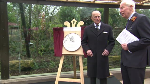 Exterior shots of Prince Philip speaking at podium before crowd and making a joke to them before unveiling plaque for the opening of the Tiger...