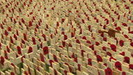 Exterior shots of rows of poppy decorated crosses being placed in the grounds of Westminster Abbey in remembrance of fallen military servicemen and...