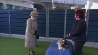 Exterior shots of the Queen accompanied by Prince Philip and Prince Michael of Kent speaking to Paul O'Grady and a member of staff about a corgi...