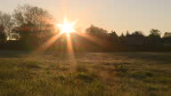 Exterior shots of the sun shining from behind trees over a field in the early morning on April 20 2017 in Autun France