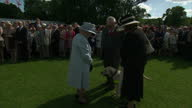 Exterior shots Queen Elizabeth II talking with guests at Red Cross garden party at Buckingham Palace and strokes guests guide dog on June 10 2014 in...