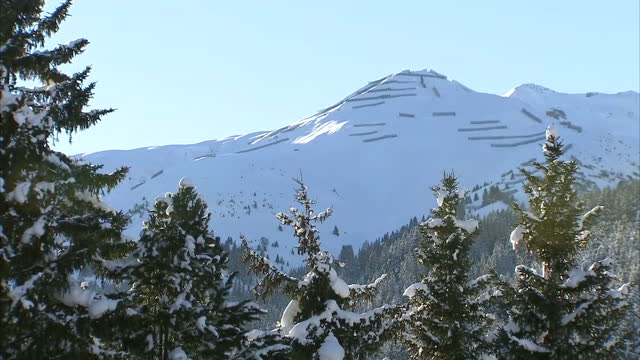Exterior shots snow covered trees and mountains surrounding the town of Davos in the Swiss Alps on January 21 2016 in Davos Switzerland