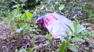 Exterior shots various of litter discarded on grass on the side of the road litter such as empty crisp packets plastic carrier bag and drinks can in...