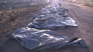 CLEAN Exterior shows line of body bags news MH17 crash siteon July 22 2014 in Donetsk Ukraine