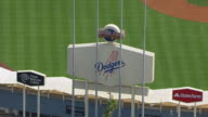 MS AERIAL POV Exterior view of Dodger Stadium with sign / Los Angeles, California, United States