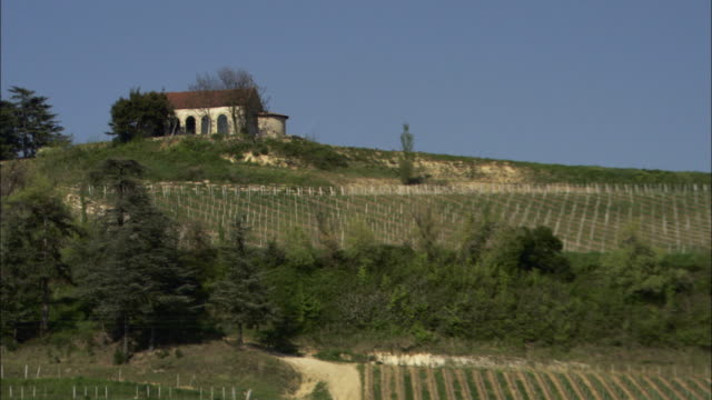 Extreme Long Shot pan-right zoom-out - A small house overlooks vineyards in Bordeaux, France. / Bordeaux, France