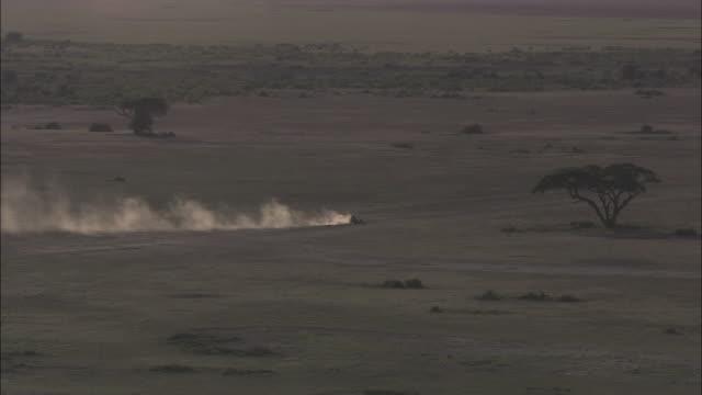 Extreme Long Shot static - An SUV kicks up dust as it speeds across a savanna. / Kenya
