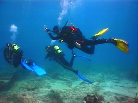 Extreme tourism.Scuba diver explore the ocean floor