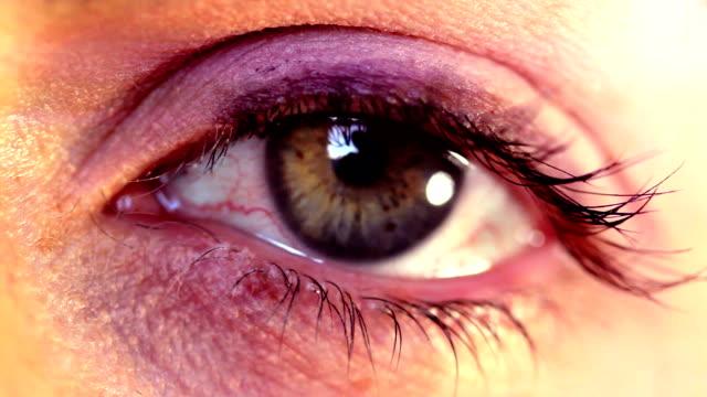 Eye Stare. HD