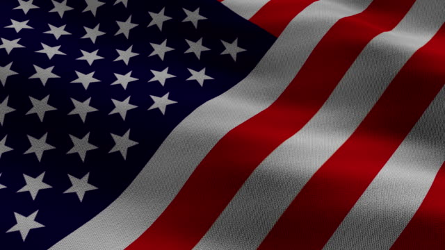 Fabric Patterned and Animated US Flag waving