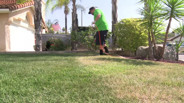 Facing a historic drought and tighter water restrictions some homeowners in California spray paint their lawns green for that perfect just watered...