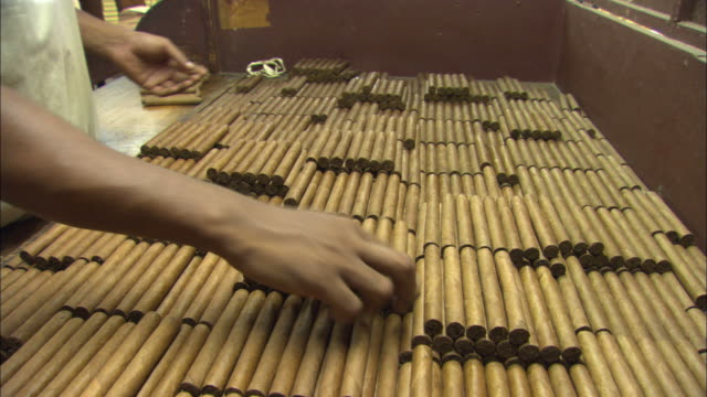 MS, factory worker sorting cigars on work bench, Cuba