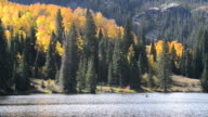 Herbstfarben auf Cataract Lake, Colorado