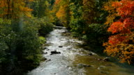 Fall_stream_hd