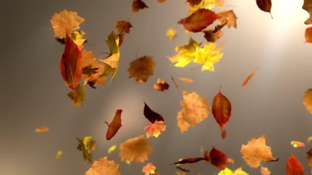 HD: Falling Leaf Endlos wiederholbar Hintergrund
