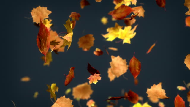 HD: Falling leaves Loopable Background