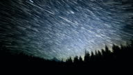 Falling Stars over a Forest Meadow and Mt. Hood Abstract Star Trails Night Time Lapse