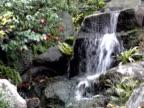 NTSC: Falling water in Japanese garden (video)