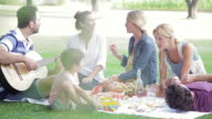 Family and friends enjoying weekend picnic