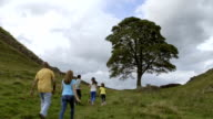 Family at Sycamore Gap
